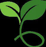 Seedling_RGBforWeb