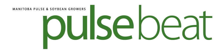 Pulse Beat – Fall/Winter 2017